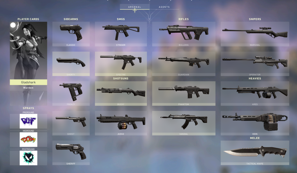 Collection page containing all the guns in Valorant