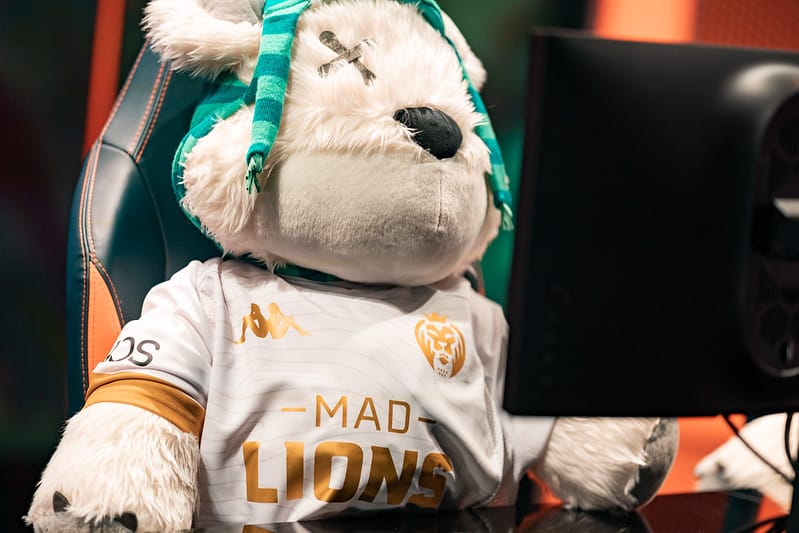 Teddy bear wearing a MAD Lions Jersey